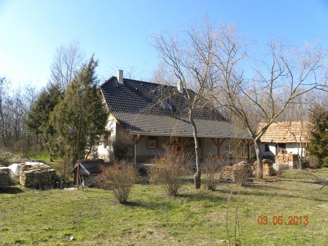 Zsana Bárdos 012 Zsana | 39.500 EUR